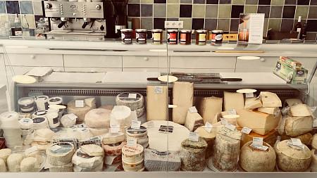 Zum goldenen Käse | Wein Tübingen