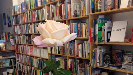 Bild: ROSALUX Buchhandlung